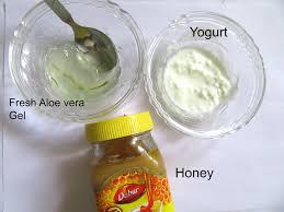 aloevera gel honey yogurt hair mask