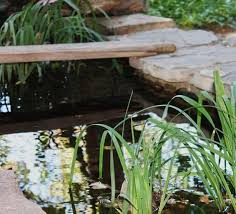 small ponds won t require a powerful heater but larger ponds will need a lot of electricity to maintain water temperatures