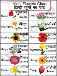 list of mon flowers to print this chart right on the chart below and on print