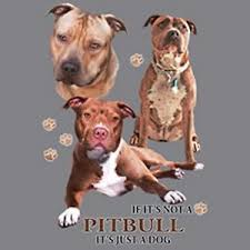 Details About If Not American Pit Bull Just Dog Pick Your Size Hood Sweatshirt