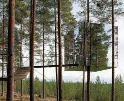 treehouse masters mirrors. Treehouse Masters Mirrors Urnatursweden201620jpg Mirror Sweden