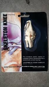 Us 6 99 Mini Female Anatomy Human Knee Joint Model Skeleton Throat Anatomical Anatomy Skull Sculpture Head Model Muscle Bone Artist In Medical