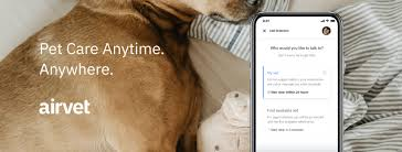 From routine appointments to emergency situations or surgeries, the carecredit credit card can give pet owners the peace of mind needed to care for pets big and small with veterinary financing. Turkey Creek Animal Hospital