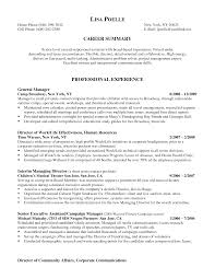 Sample Resume Of Executive Assistant To Ceo New C Level Executive