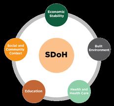 Social Determinants Of Health Quality Enhancement Plan