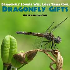 dragonfly will love these cool dragonfly gift ideas