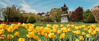 boston public garden massachusetts