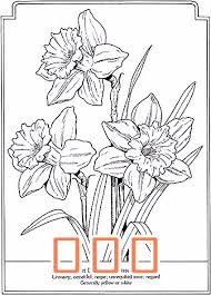 Pin by Ivan Schultz on 5 flower in 2020   Daffodil tattoo, Flower drawing  design, Embroidery flowers pattern