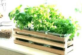window box herb garden indoor plant stand planter details about kitchen wooden trough outdoor stan outdoor herb