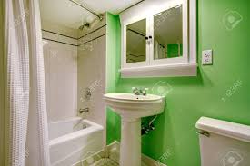 Grünes Badezimmer Mit Weißen Waschbecken Stand Wc Und Badewanne