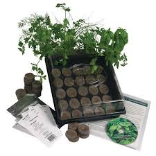 indoor culinary herb garden starter kit free on orders over 45 4012290