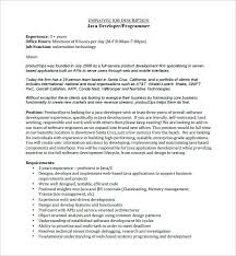 Sql Programmer Job Description Web Developer Job Description ...