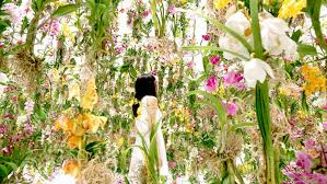 garden flowers. Floating Flower Garden Flowers And I Are Of The Same Root One