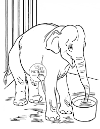 Zoo Elephant Coloring Page For Kids