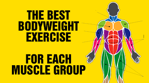 the best bodyweight exercise for each muscle group calisthenic exercises you