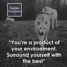Quotes About Who You Surround Yourself With Best Of 24 Powerful 'Surround Yourself With People Who' Quotes