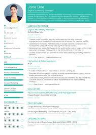 Guide 3 Resume Format Best Resume Format Marketing Resume