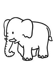 30 Beste Afbeeldingen Van Project Olifanten En Panters Elephants