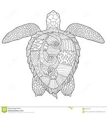 Small Picture Adult Antistress Coloring Page With Turtle Stock Vector Image