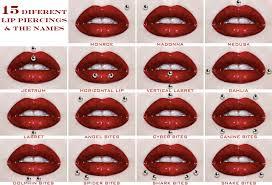 dahlia bites piercing tumblr.  Bites Lip Piercing Types With Dahlia Bites Tumblr