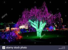 Defiance Zoo Lights A Tree Display During Zoolights At The Point Defiance Zoo In