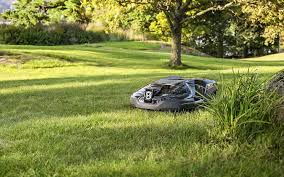 10 best robot lawn mowers beats the neighborhood kid