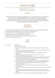 Housekeeping CV example