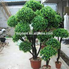 indoor artificial plants large outdoor topiary trees boxwood