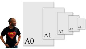paper sizes relative to stephen s height