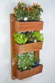 indoor apartment gardening. Perfect Apartment 6 Gardening Tips For Apartments To Indoor Apartment N