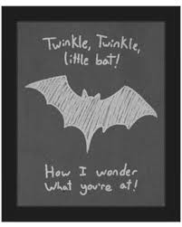 Image result for twinkle little bat