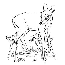 Bambi Kleurplaten Kleurplatenpaginanl Boordevol Coole Kleurplaten