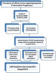 Hepatitis B Chart View Image