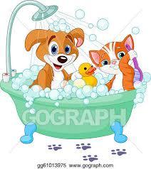 bathtub relaxation dog and cat having a bath