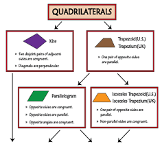 Quadrilateral Flow Chart Blank Printable Quadrilateral Charts To Learn Types And Properties