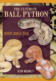 Ball Python Morph Chart The Ultimate Ball Python Morph Maker Guide By Kevin