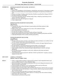 sharepoint developer resume senior sharepoint developer resume samples velvet jobs