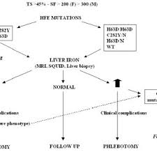 Flow Chart For Hemochromatosis Diagnosis Based On Genotype