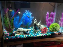 Mario Brothers Aquarium Decorations Tank Ideas For Bettas Google Search Aquarium Fish And Ideas