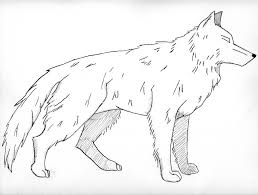Realistic Wolf Coloring Pages Wolf Art