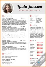 English Curriculum Vitae Enchanting Sample Curriculum Vitae English