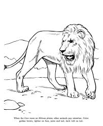 Small Picture African Lion Coloring Page African Lion Coloring Page Color Luna