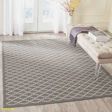 living room rugs inspirational rugs for bedroom best 4 x 6 rug home interior and furniture