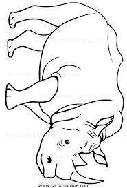 Di Disegno Di Da Colorare Disegno Colorare Rinoceronti Da