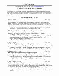 Sample Resume For Credit Manager Sample Resume For Finance Manager Luxury Finance Manager Resume 9