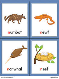 Letter N Beginning Sound Words Picture Cards Color