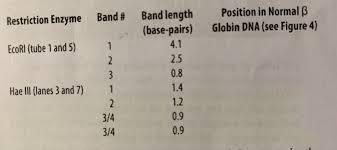 Solved Use Figure To 4 Measure Estimated Measurement O