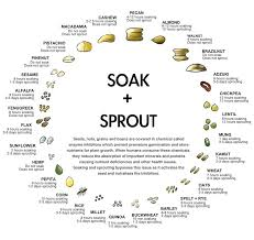 Soak And Sprout Chart Soak And Sprout Chart In 2019 Raw Nuts Sprouts Healthy