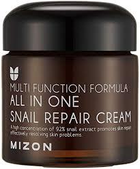 MIZON All In One <b>Snail Repair Cream</b>, 75 Grams: Amazon.ca: Beauty