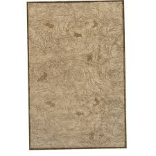 shaw area rugs 8x10